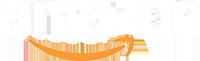 Amazon Logo NGT LIVE 2020